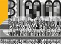BIMM Logo, Beschreibung:Bundeszentrum für Interkulturalität, Migration und Mehrsprachigkeit